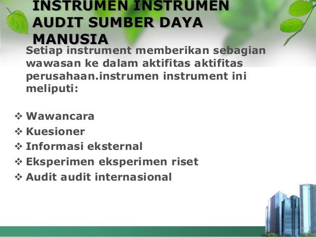 point-yang-perlu-dalam-audit-sumber-daya-manusia